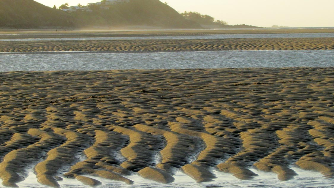 blacks beach low tide