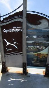 Cape kidnappers sign beach