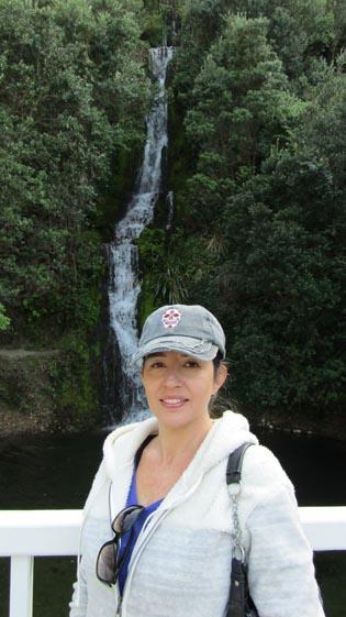 Napier botanical gardens waterfall