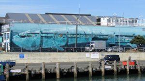 Napier whale seawall art