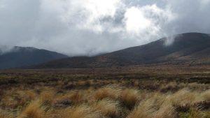 desert road new zealand north island