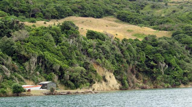 Maud Island