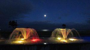napier new zealand fountains