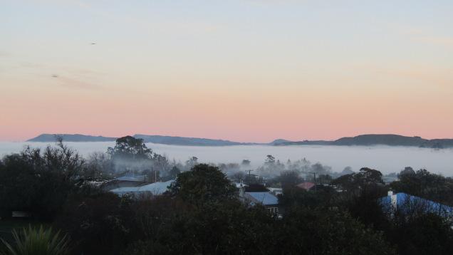 waipukurau fog