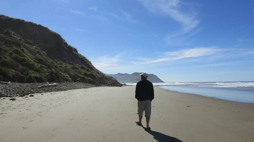 Blackhead beach new zealand