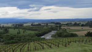 Pukeora estate winery