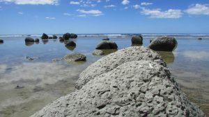 Te Angiangi Marine Reserve mudstone