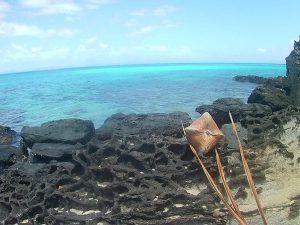 Taveuni Fiji deserted island