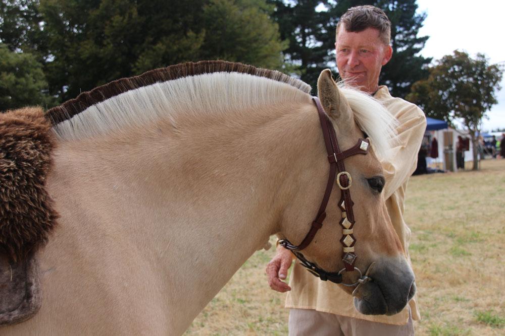 New Zealand Icelandic horses
