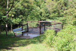 Maleny platypus viewing deck