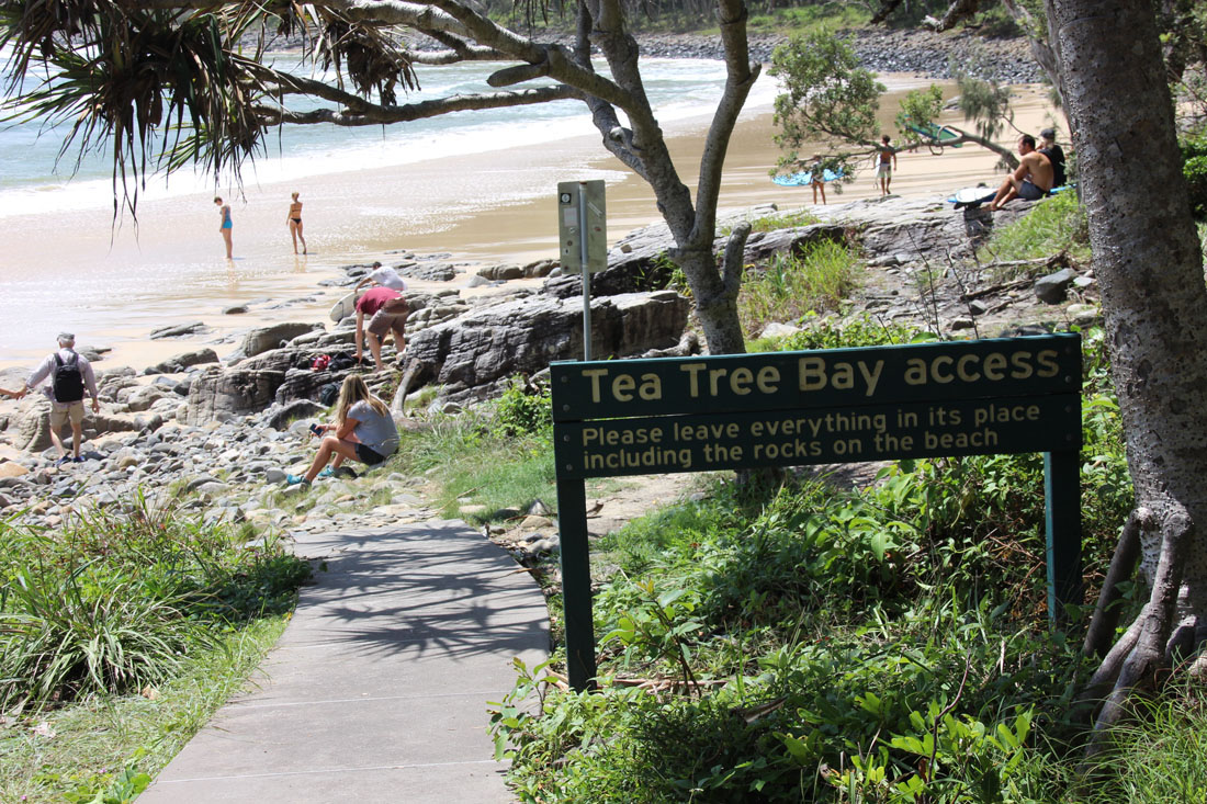 Noosa National Park tea tree bay