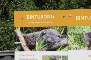 Wildlife HQ Binturong sign