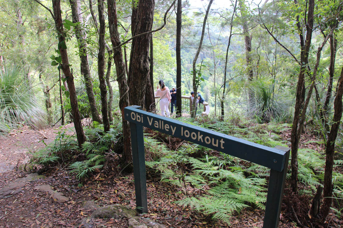 obi valley lookout platform