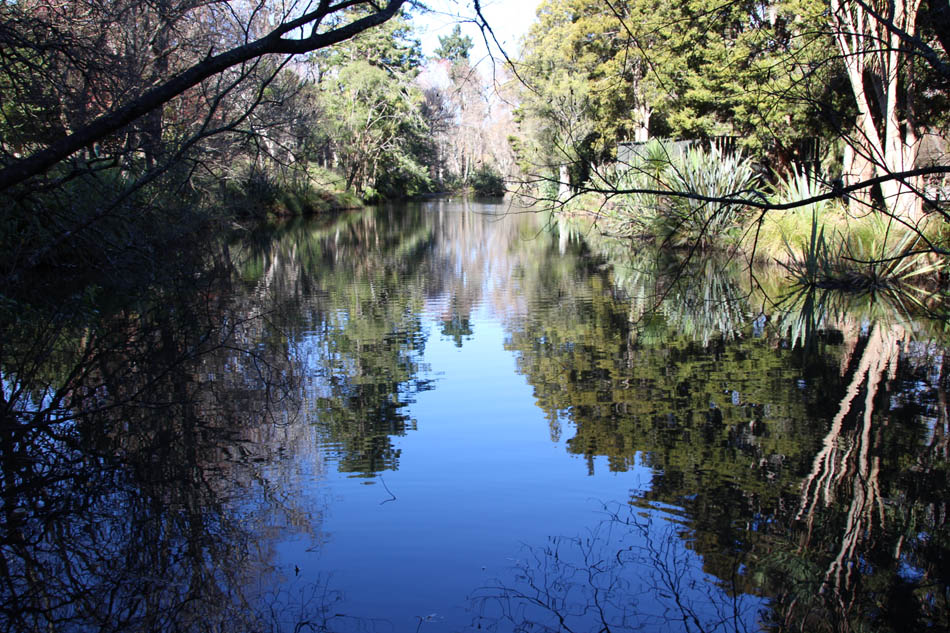 Dannevirke Domain reflection pond